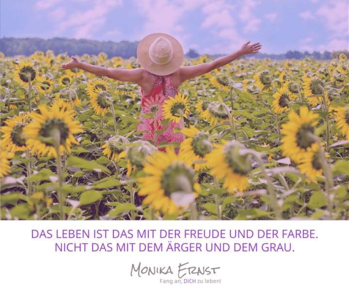 Suchst Du die Freude in Deinem Leben?